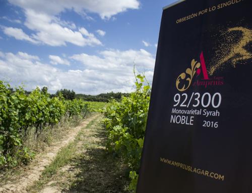 Una cata entre lo virtual y lo real para el vino Lagar d'Amprius Syrah 92/300 en los viñedos del Matarraña.