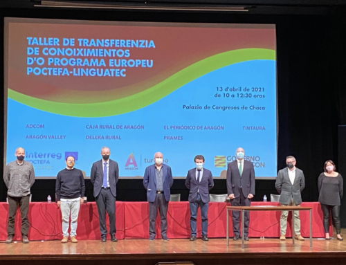 Política Lingüística presenta sus herramientas digitales para la lengua aragonesa en un nuevo encuentro del programa POCTEFA LINGUATEC